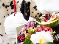Dieta BARF para perros: Guía completa con ejemplos y cantidades