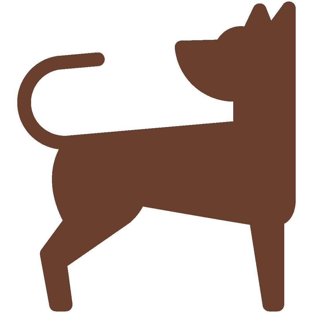Aliment naturel déshydraté pour chiens adultes